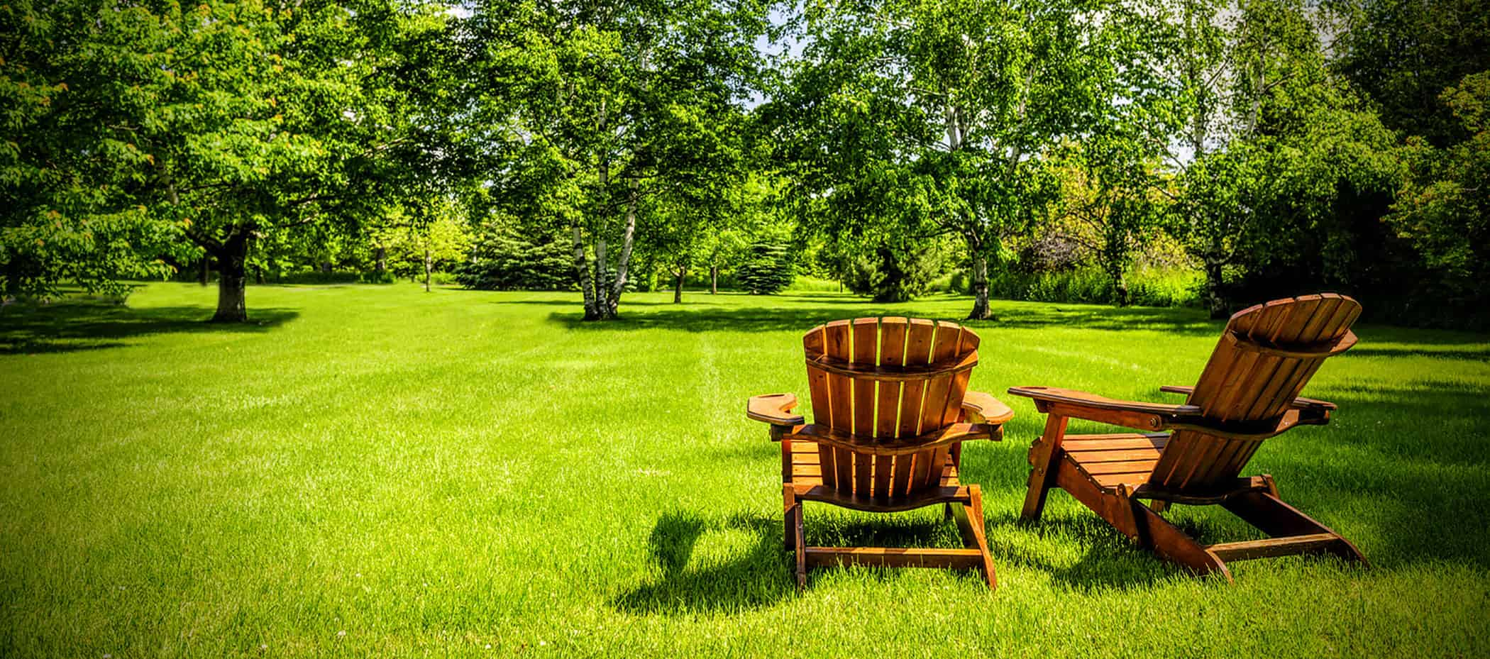 background image of mowed lawn